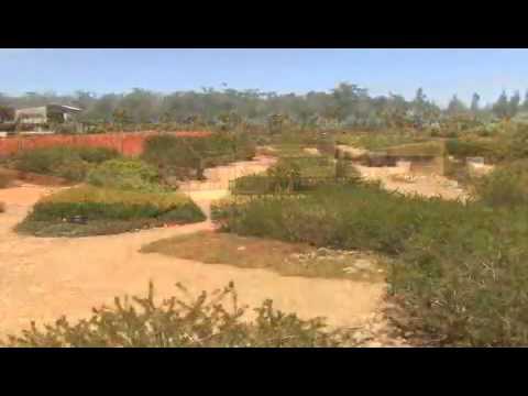 Australian Garden, Royal Botanic Gardens Thumbnail