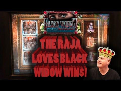 💰 The Raja Loves 🕷 Black Widow Wins 🕷