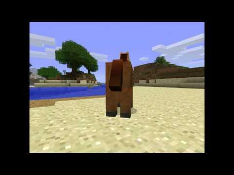 Minecraft Dowcipy - Odc.1 Rycerz I Złota Rybka