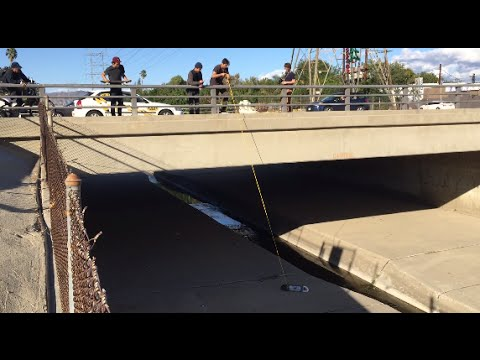 Mikey Taylor Almost Fell off a Bridge