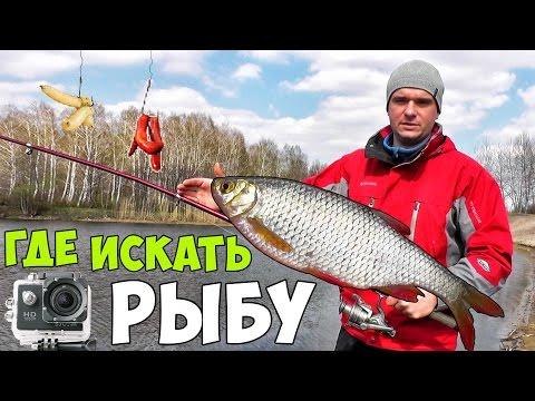 северский донец идеже  дозволительно расставлять ловушки  рыбу