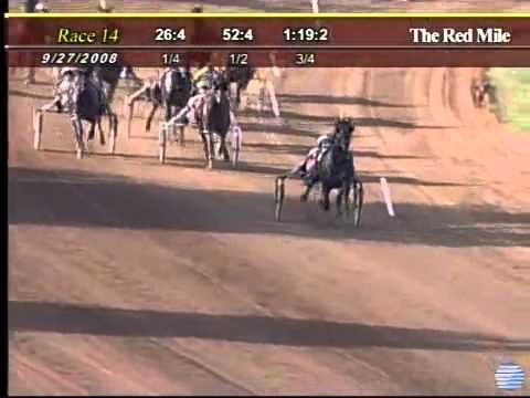 Harness Racing Somebeachsomewhere World Record 3yo Pacing Horse.flv