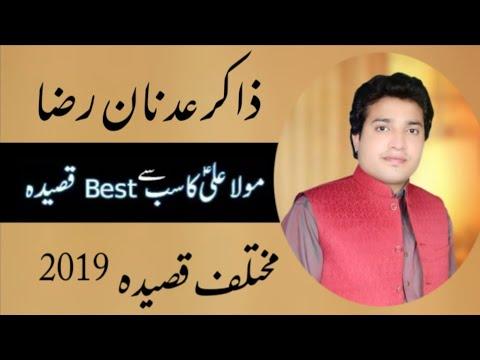 Zakir Adnan Raza Ratan Qasida Mola Ali a.s 2019