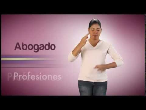 Módulo Profesiones del Video Diccionario de Lengua de Señas Venezolana Tomo 3