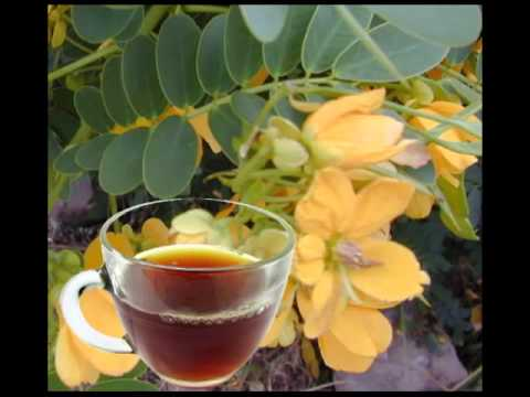 Senna Herb Tea Health Benefits & Side Effects