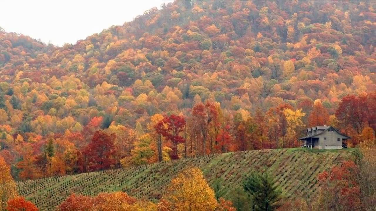 Cabins, Pigeon Forge log homes for sale Gatlinburg TN Smoky mountain autumn pictures