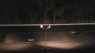 Fast And Furious-On The Outback RC Track - September 12, 2009 -  8