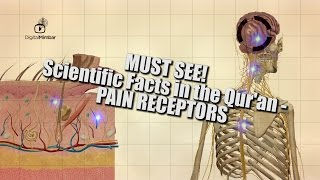 MUST SEE! Scientific Facts in the Qur'an – Pain Receptors