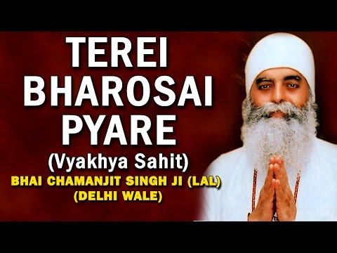 Bhai Chamanjeet Singh Ji Lal - Tere Bharosai Pyare (Vyakhya Sahit) - Satgur Hoye Dayal