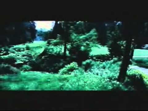 Sudu Pata Gaume Adaraya Badune video