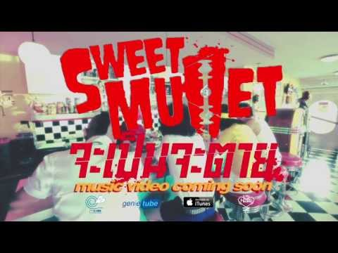 TEASER MV จะเป็นจะตาย - Sweet Mullet