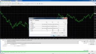 Expert4x, No Stop, hedged, Grid trading EA support webinar
