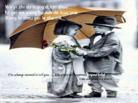 Jiu Shi Ai Ni Just Loving You by David Tao chinese lyrics n english sub