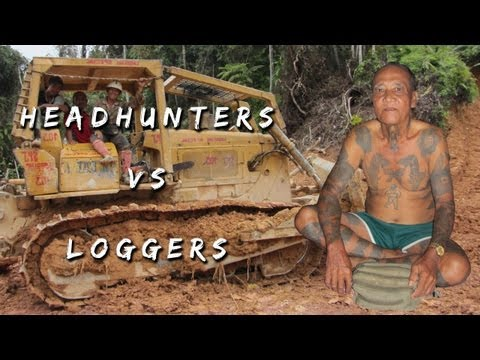 Logging and Deforestation in Borneo Interview with Iban Chief...