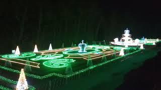 Night light show in Wilanow