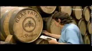 How to make tequila - Discovery Channel