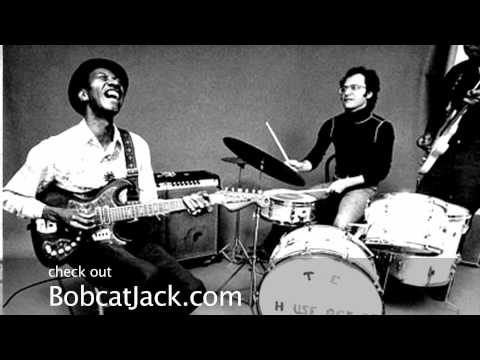 Hound Dog Taylor Eulogy - Bobcat Jack