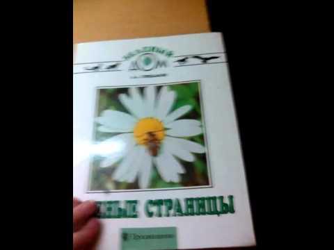 Рассказ солнышко из книги зеленые страницы читать