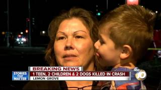 UPDATE: 1 teen, 2 children and 2 dogs killed in crash