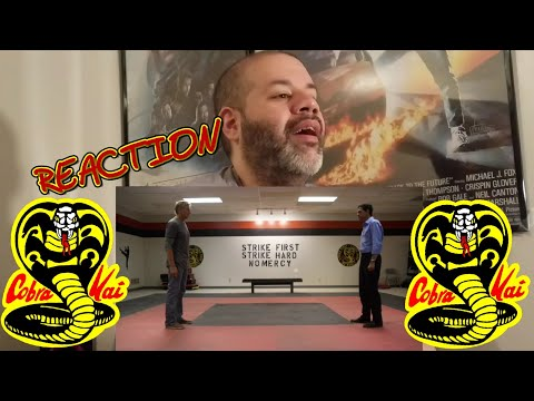 COBRA KAI THE KARATE KID SAGA CONTINUES: FIRST FOOTAGE TEASER TRAILER: REACTION