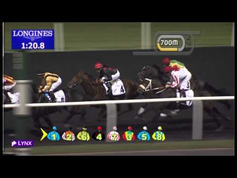21.02.2013 Meydan (Dubai-UAE) 3.Race Al Naboodah Travel & Tourism Agencies Trophy - 1.900 m