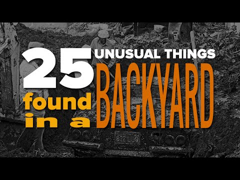 25 Unusual Things You Won't Believe Were Found In A Backyard