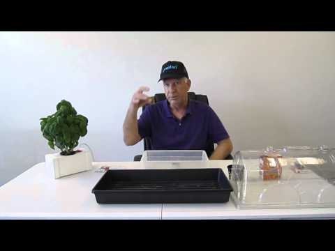 How to prepare your grodan cubes for planting cuttings or seeds for hydroponics etc.