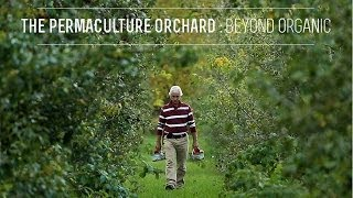 The Permaculture Orchard : Beyond Organic (Kickstarter video)
