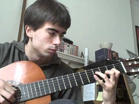 Chinese Blossom - Zenamon - Classical guitar