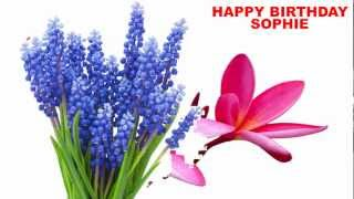 Sophie - flowers - Happy Birthday