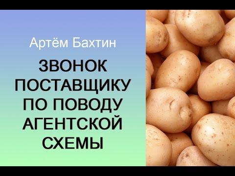 Оптовый бизнес. Запись звонка поставщику по поводу агентской схемы. Артём Бахтин
