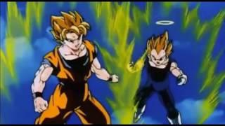 Goku and Vegeta vs Super Buu(Gohan Absorbed)