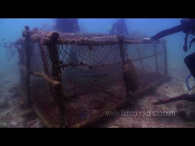 FILMCO Documentary: Hunting For Cages Part 3