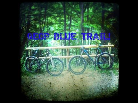 Queen Elizabeth Country Park - Blue trail