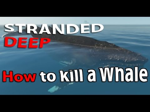 Whale in STRANDED DEEP - Me vs a Humpback Whale a long ride