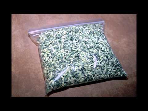 Shredded US Currency / Shredded US Money