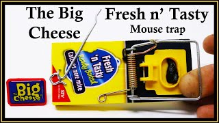 The Big Cheese - Fresh N' Tasty Mouse Trap. Mousetrap Monday