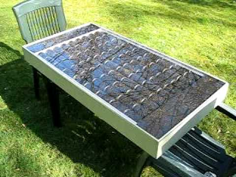solar can heater ( first test )