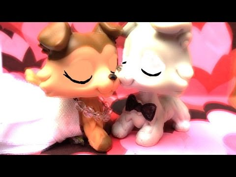 Lps❤️Music Video: ~All of me~