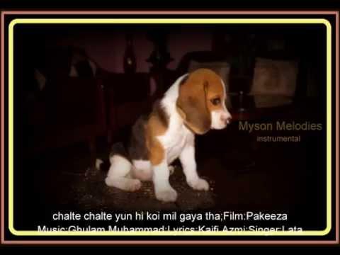 Chalte Chalte Yun Hi Koi Mil Gaya Tha-instrumental;film:pakeeza video