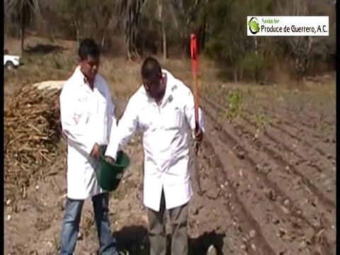PROCESO PARA TOMA DE MUESTRA EN UN ANÁLISIS DE SUELO (Fundación Produce de Guerrero A.C.)