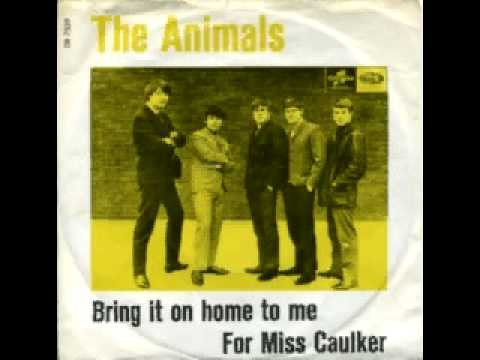 Animals - For Miss Caulker