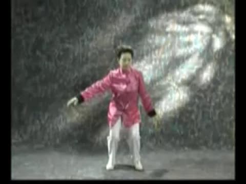 Qi Gong  Shibashi (1 parte 1 serie)