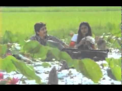 Kandal chirikkatha Kakka Karumbee..!!(Mini Anand)