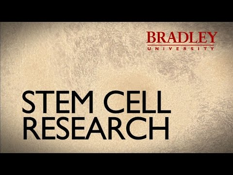 ProfMinute - Stem Cell Research