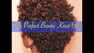 The Perfect Bantu Knot Out on a TWA