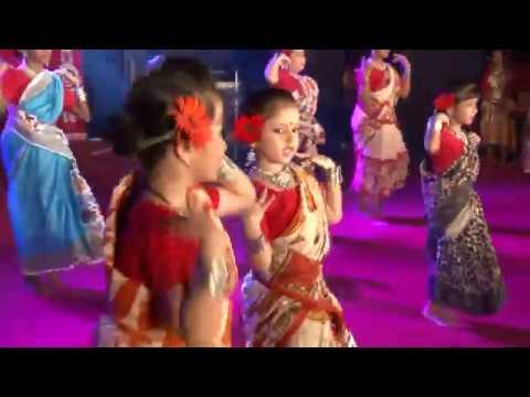 Moina Chalak Chalak Kore Re  || PBWA Dance Troupe || 2015
