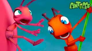 Oddbods Present: Antiks | THERE SHE BLOWS | Funny Cartoons For Kids