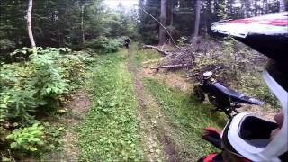 Эндуро покатуха на сликах/Pitbike forest/Kayo 140 motard [RB]