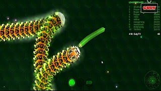 Chơi Wormax io sâu róm ăn mồi giống rắn săn mồi Slither Io cu lỳ chơi game